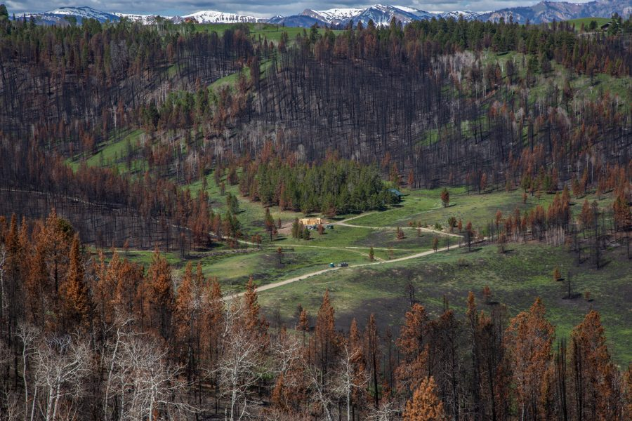 Amid acres of burned timber, a home under construction sits in a clearing in Hoback Ranches, Wyoming. Many of the 55 residents who lost homes in the Roosevelt Fire are working to rebuild  with little or no help. (Bailey Lewis/News21)