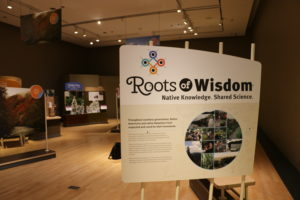 Norman Museum Exhibit Emphasizes Unique Environmental Sustainability Practice