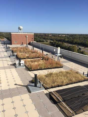 Groups of prairie grass native to the southern Plains lines the green roof of the National Weather Center in September 2017. Green roof ecosystems can reduce the cost of energy consumption in buildings. (Bret Betnar/University of Oklahoma Landscape Architecture)