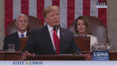 President Trump in the 2019 State of the Union address (C-Span)