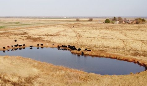 Jimmy Kinder's farm in Walters. Kinder said if water from his ponds were to spill into Deep Red Creek, then Cache Creek and into the Red River, he could be subject to federal regulation under the Obama-era ruling. Photo provided by Jimmy Kinder.